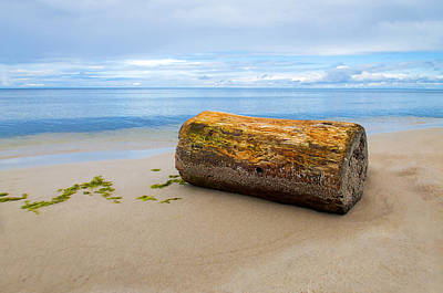 Sea View Photograph - Too Big For The Sea by Yevgeni Kacnelson