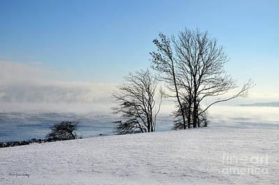 Photograph - Too Cold by Randi Grace Nilsberg
