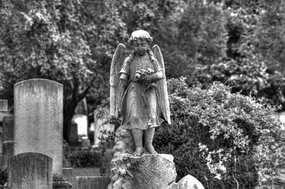 Elmwood Cemetery Photograph - Too Young by Shannon Louder