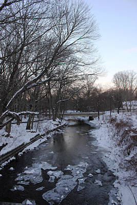 Skate Creek Photograph - Tookany Creek by Jacob Leff