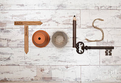 Shed Photograph - Tools by Amanda Elwell
