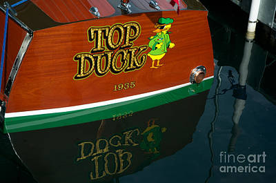 Art Print featuring the photograph Top Duck At Tahoe's Wooden Boat Festival  by Vinnie Oakes