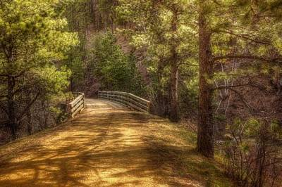 Top Of The Bridge Art Print by Michele Richter