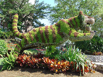Photograph - Topiary Tiger by David Nicholls
