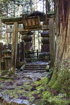 Torii Gate In Koyasan Graveyard Art Print