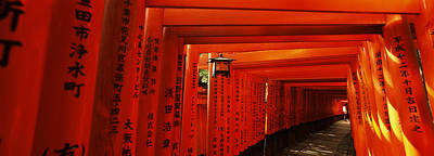 Shinto Temple Photograph - Torii Gates Of A Shrine, Fushimi by Panoramic Images