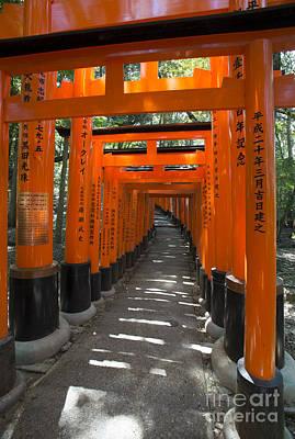 Torii Gates Of Inari Shrine Art Print