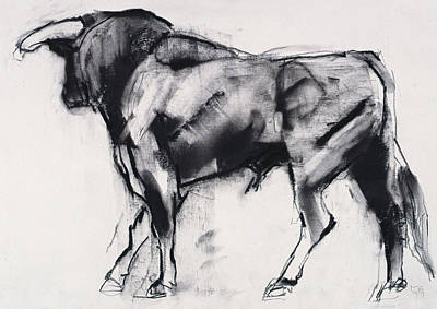 Bull Pastel - Toro Azul   Study by Mark Adlington