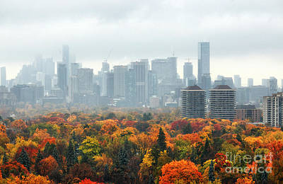 Photograph - Toronto Autumn 2014 by Charline Xia