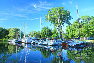Photograph - Toronto Island by Frank Townsley