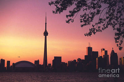 Photograph - Toronto Skyline At Dusk by Dee Cresswell