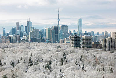 Photograph - Toronto Winter by Charline Xia