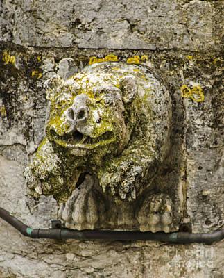 Photograph - Torre De Belem Gargoyle by Deborah Smolinske