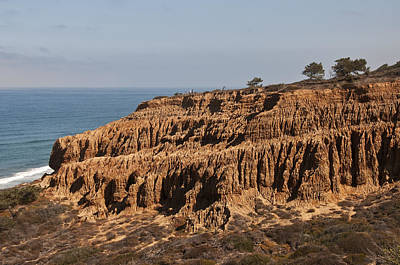 Photograph - Torrey Pines Razor Point 2 by Lee Kirchhevel