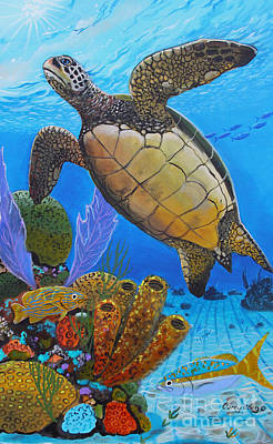 Tortuga Art Print by Carey Chen