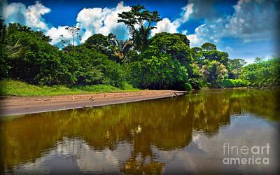 Tortuguero River Canals Art Print by Gary Keesler