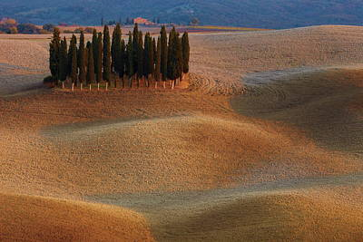 Rural Photograph - Toscana by Vadim Balakin