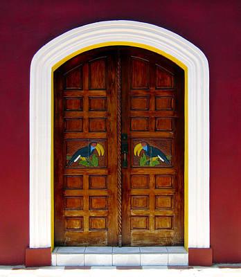 Door Photograph - Toucan Door by Kurt Van Wagner