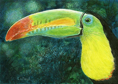 Drawing - Toucan by Sandra LaFaut