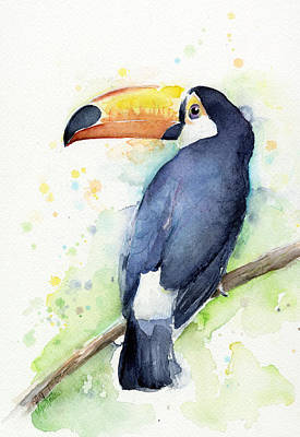 Birds Painting - Toucan Watercolor by Olga Shvartsur