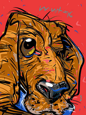 Dog Close-up Drawing - Touch Of Gray by Brett LaGue