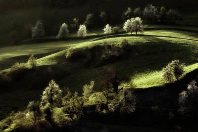 Slovenia Photograph - Touch Of Light by Jure Kravanja