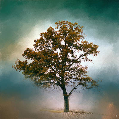 Photograph - Touch Of Teal Cotton Field Tree - Landscape by Jai Johnson