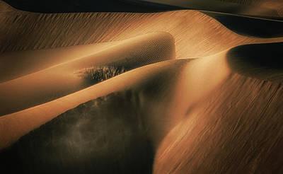 Dunes Wall Art - Photograph - Touch The Wind by Babak Mehrafshar (bob)