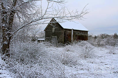 Photograph - Touisset Barn by Butch Lombardi