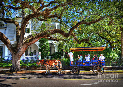 Photograph - Touring Through Historic Charleston by Kathy Baccari