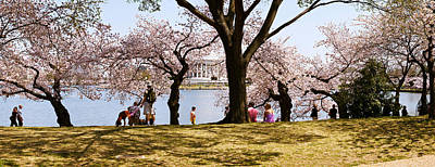 Cherry Blossoms Photograph - Tourists In A Park With A Memorial by Panoramic Images