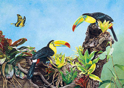 Toucan Mixed Media - Tou's Company - Greeting Card by Carole Niclasse