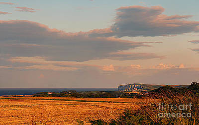 Colourfull Photograph - Towards Flamborough by David  Hollingworth