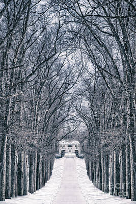 Towards The Lonely Path Of Winter Art Print