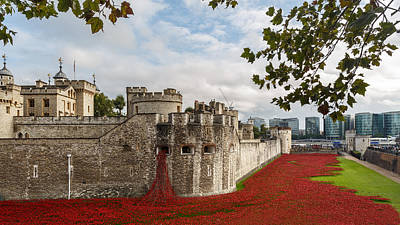 Tower Of London Poppies Art Print