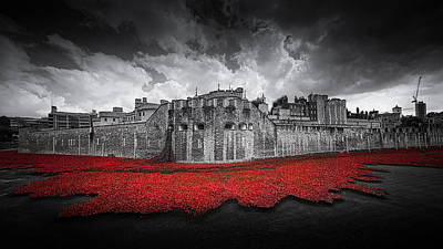 Installation Art Photograph - Tower Of London Remembers by Ian Hufton
