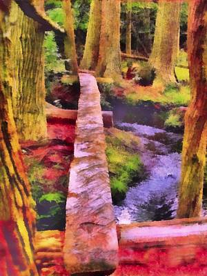 Towering Red Cedar Trail Art Print by Rick Todaro