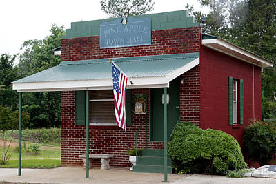 Photograph - Town Hall In Pine Apple by Carol M Highsmith