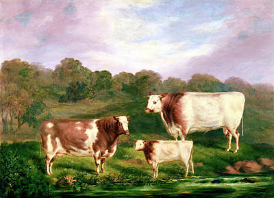 Three Cows Painting - Towneley Pedigrees by Henry Barraud