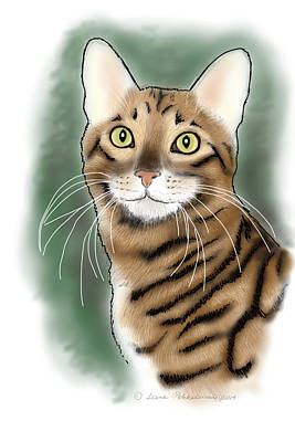 Photograph - Toyger Head by Leena Pekkalainen
