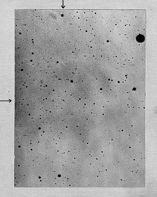 Planetoid Photograph - Track Of The Asteroid Sappho by Universal History Archive/uig