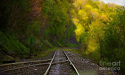 Photograph - Track Through The Hillside  by Peggy Franz