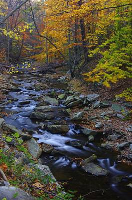 Tracking Color - Big Hunting Creek Catoctin Mountain Park Maryland Autumn Afternoon Art Print by Michael Mazaika