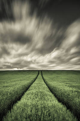 Wheat Field Sky Photograph - Tracks by Dave Bowman