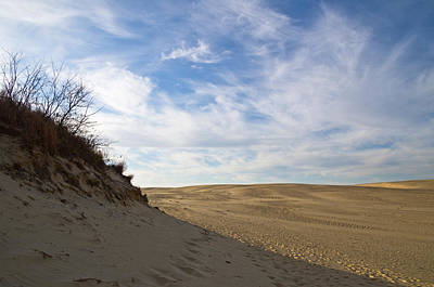 Art Print featuring the photograph Tracks In The Sand Trail by Gregg Southard