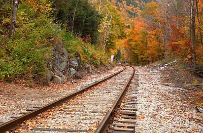 Photograph - Tracks Through The White Mountains by Adam Jewell