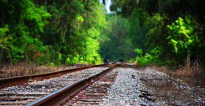 Photograph - Tracks To Nowhere by Beverly Stapleton