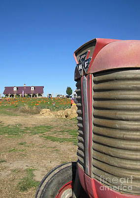 Garden Fruits - Tractor on the Pumpkin Farm by Minding My  Visions by Adri and Ray