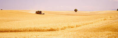 Tractor, Wheat Field, Plateau De Art Print by Panoramic Images