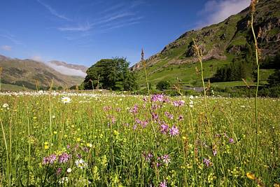 Traditional Hay Meadows Print by Ashley Cooper